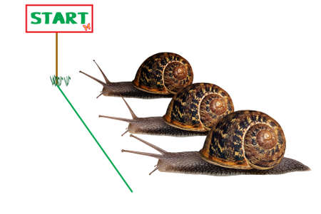 Snail race - time cost concept photo
