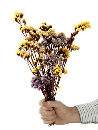 apologise: Peace offering - man with bunch of dried flowers, over white Stock Photo