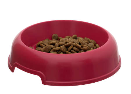Bowl of dry dog food aka kibble, isolated on white background Stock Photo - 10683648