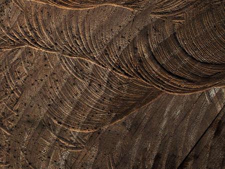 sawn: Sawn wood background