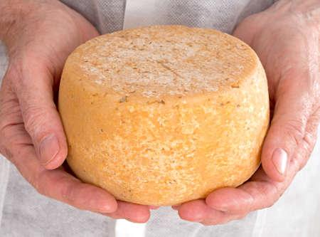 Productor celebración de queso de cabra - ronda, aislado Foto de archivo
