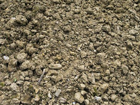 stoney: Rocky stoney clay soil - gardening nightmare