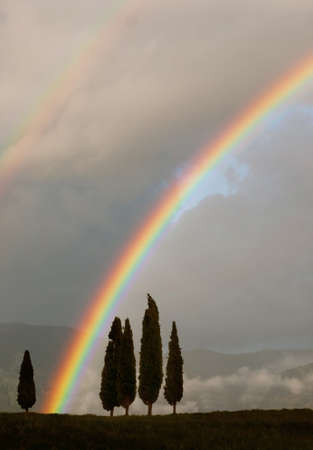 Typical Tuscan horizon with rainbow photo