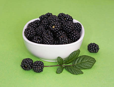 uncultivated: Fresh picked uncultivated berries - free food