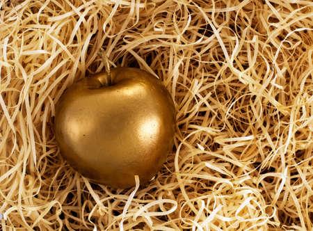 midas: Midas touch - golden apple, successful investment management concept