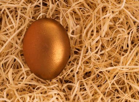 gniazdo jaj: Złoty gniazdo jaj w chronionym środowisku - koncepcja inwestycji finansowych