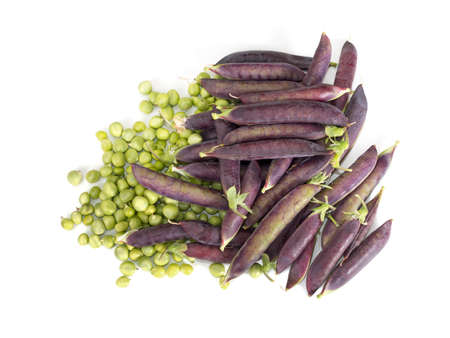 coking: Heritage variety of purple podded pea - garden vegetable
