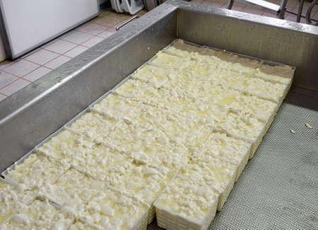 coagulate: Soft cheese being made  Draining   Stock Photo