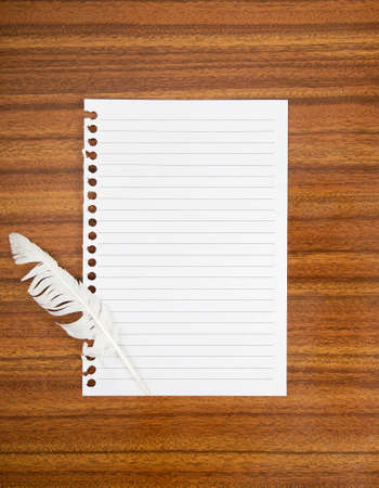 concede: White feather - cowardicem defeat concept  Blank lined paper  Stock Photo