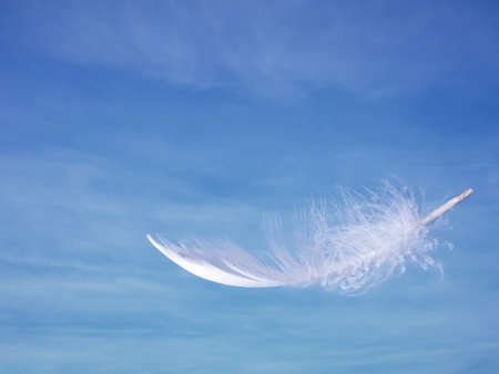 as: Light as a feather over sky.