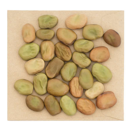 broad bean: Vicia faba, aka broad bean, fava,field bean, bell bean or tic bean. For sowing. Stock Photo