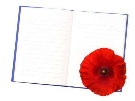 papaver rhoeas: Papaver rhoeas the redflowered corn poppy with notebook. Remembrance message..