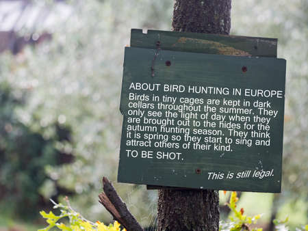 Hunting songbirds such as thrushes remains legal in Italy.