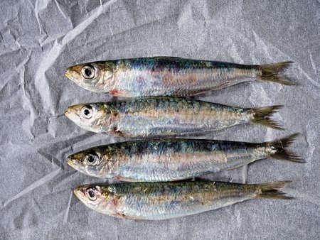 sardines: Sardines. Healthy oily fish aka pilchards.