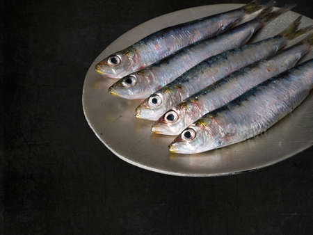 sardinas: Pescado graso saludable. Sardinas en un plato. Foto de archivo