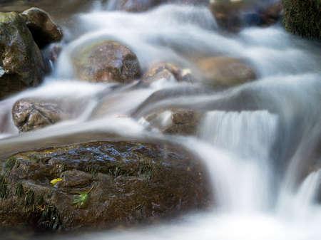 springwater: Mountain stream, spring detail.