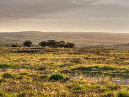 moorland: Exmoor, UK. Wild open moorland. Evening.