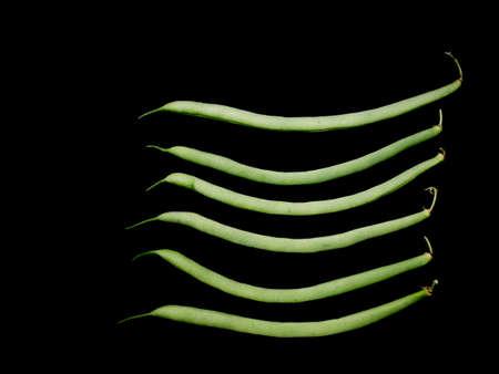 show garden: French beans. Show veg.