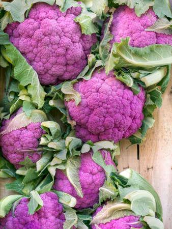 garish: Bit garish but very healthy vegetable. Purple cauliflower. Stock Photo