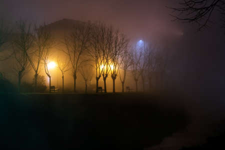street lights: Foggy river bank with benches and street lights.