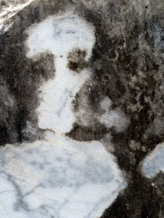 marbling: Pardolia. natural marbling in marble  looks like a skull. Stock Photo