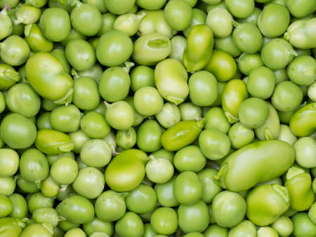 Fresh picked and podded peas and beans. From my garden.