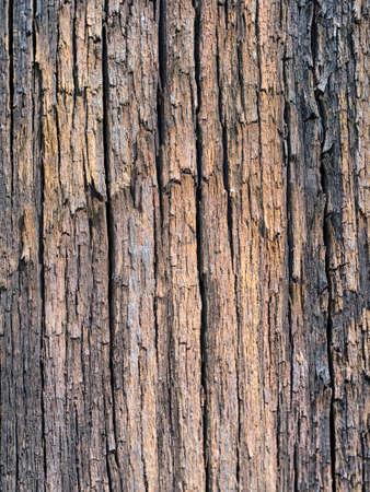 Old railway sleeper wood texture, vertical grain.