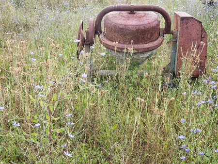 Old cement mixer. With wild chicory flowers. Chicorium intybus. Banco de Imagens