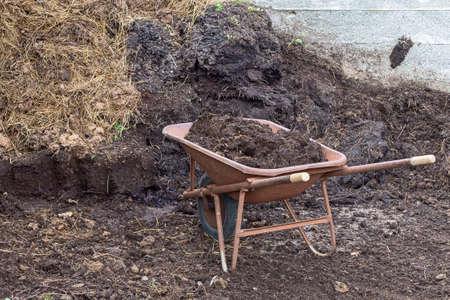 Organic fresh farm manure. With wheelbarrow.