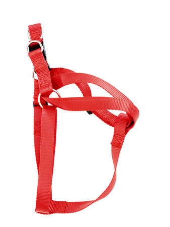 Generic, unbranded red dog harness, isolated on white.