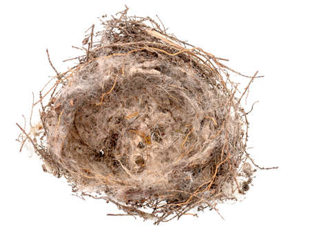 Top view of empty bird nest isolated on white, rather scruffy, very small - about 4 inch across.