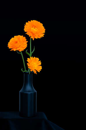 Bright orange marigold flowers, Calendula officinalis, against deep blue background. Edible medicinal herb. Still life in dark vase. Banque d'images - 124045787