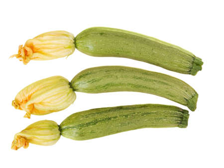 Small Zucchini with flowers isolated on white background.