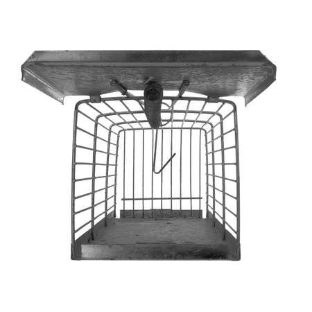 Humane type mousetrap, front view looking inside, isolated on white. Trap not set.