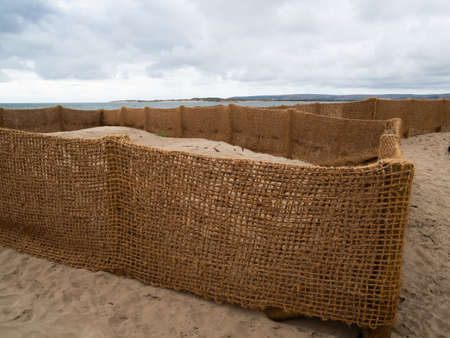 Hessian type fence biodegradable matting retaining sand to protect nearby houses, property from encroachment. Instow, north Devon. Stock Photo