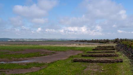 View along the Great Bank, Horsey Island, Braunton Marsh, Devon, UK at low tide. On the South West Coastal Path. Stock Photo