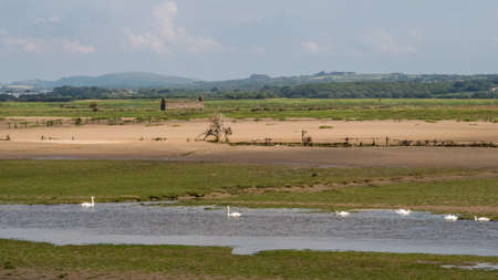View over Horsey Island, Braunton Marsh, Devon, UK at low tide, photo taken from South West Coastal Path. Stock Photo