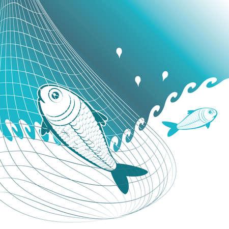 fish animal: fishing with net