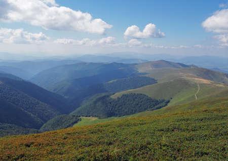 roundish: Alpine meadows of Ukraine - Roundish tops Carpathian mountains, ridge Borzhava