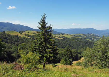 Typical Carpathian landscape from height of the Synevyr pass, Ukraine Stock Photo