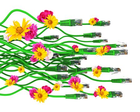 cables: Computer cables with flowers isolated on white background. 3D illustration