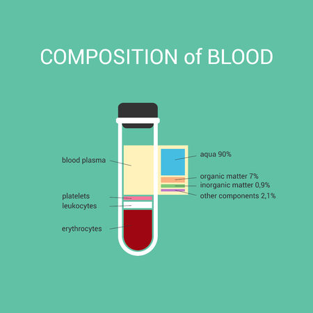 erythrocytes: Illustration in a modern style. The composition of blood and composition of plasma