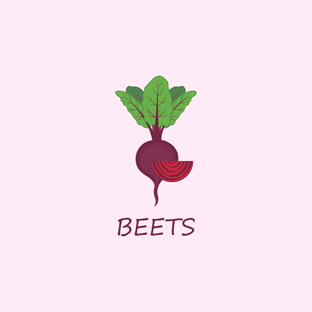 Autumn harvest. Vector beets isolated on background. Red beetroot whole, sliced. Natural healthy food. Illustration