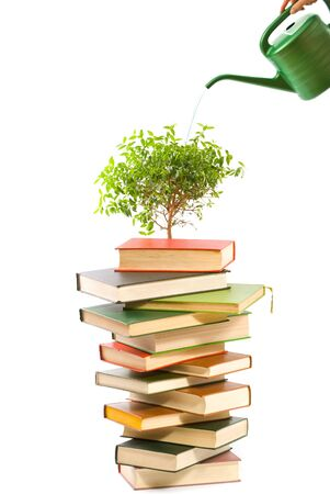 Ecology concept. Books and watering pot isolated on white background   photo