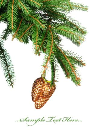 Pine branches and christmas toy isolated on white background  photo
