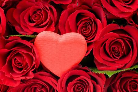 Valentine Heart in red roses Stock Photo