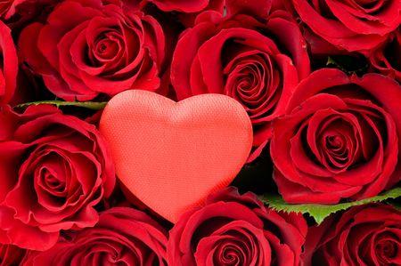 Valentine Heart in red roses Standard-Bild