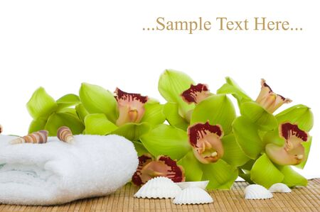 Beautiful green Orchid and spa set isolated on white background