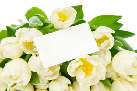Bouquet of tulips with greeting card isolated on white background photo