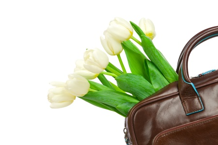 Bouquet of tulips in the leather briefcase  Concept photo